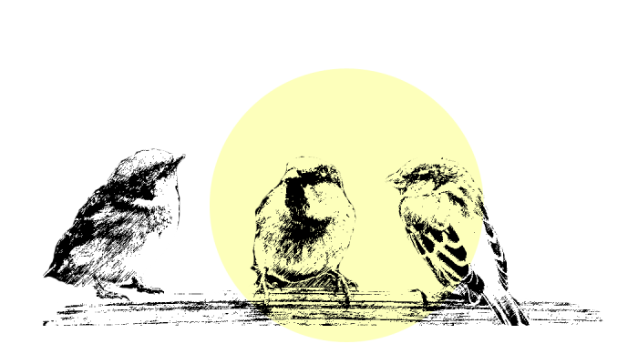 Neue Wege Berlin SelbsthilfeSchlaganfall Illustration Spatzengruppe Startseite Blogbeitraege Mitglieder, Betroffene
